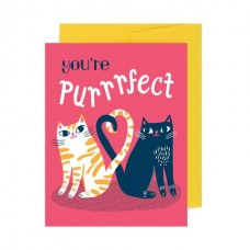 Card - You're Purrrfect