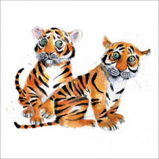 Card - Tiger Cubs