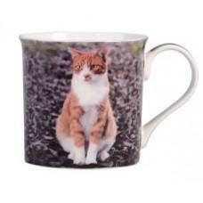 Ginger & White Cat Mug