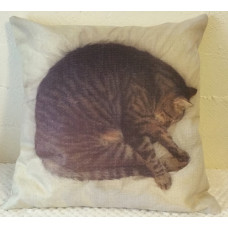 Sleeping Kitty Cushion