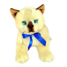 Siamese Plush Kitten