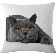 British Shorthair Cushion