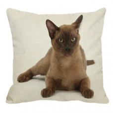 Burmese Cat Cushion