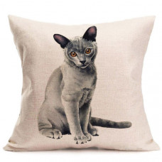 Grey Burmese Cushion