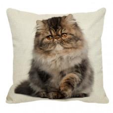Persian Sitting Cushion