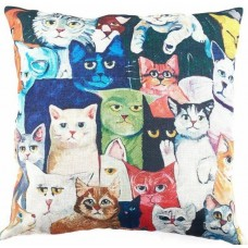Colourful Faces Cushion