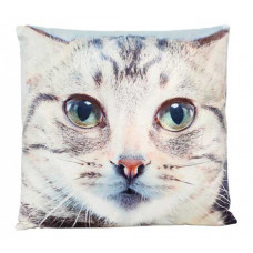 Curious Cat Cushion