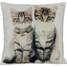 Two Cute Kittens Cushion