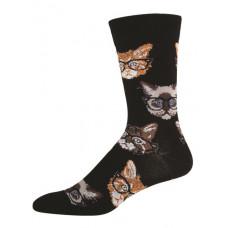 Kittenster Socks - Mens